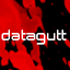 Avatar for datagutt