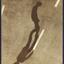 Avatar for ZigiL
