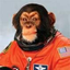 Avatar for spacemonkey2000