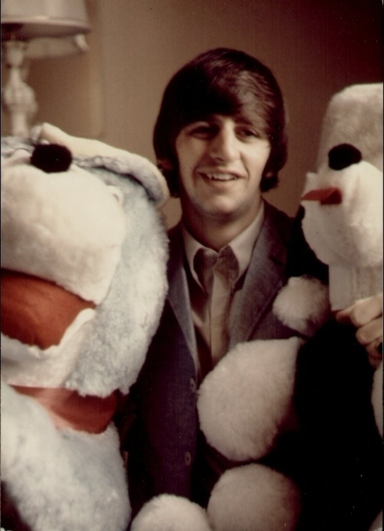 Ringo stuffies