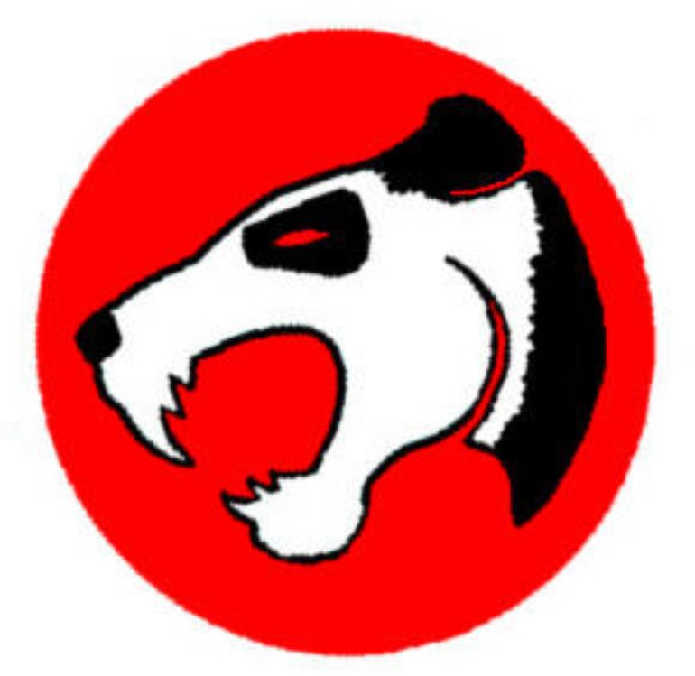 Thunder Panda Logo