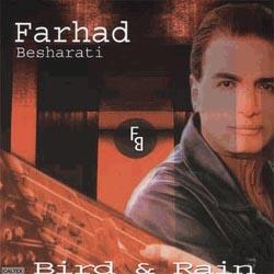Farhad Besharati
