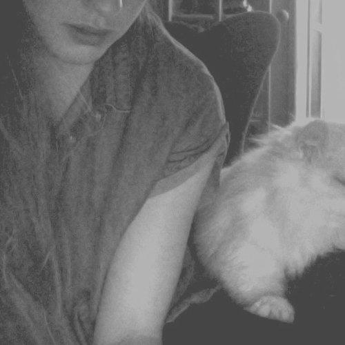 cat kiss 搭配