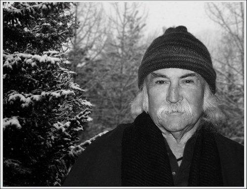 hhDavid Crosby - artist photos