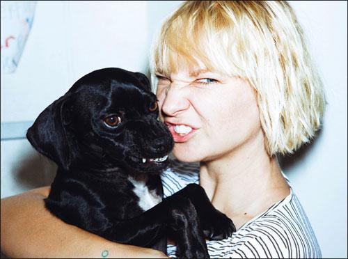 Sia - Chandelier Lyrics | MetroLyrics