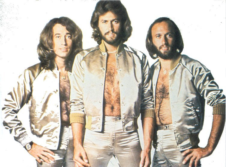 Bee Gees - The Bee Gee's Sing & Play 14 Barry Gibb Songs