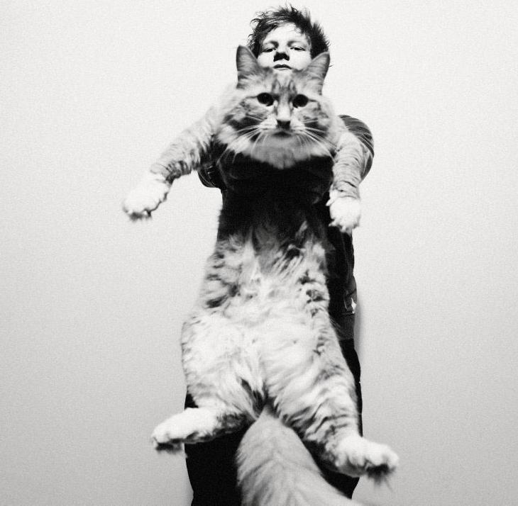 Ed Sheeran Song Lyrics by Albums | MetroLyrics
