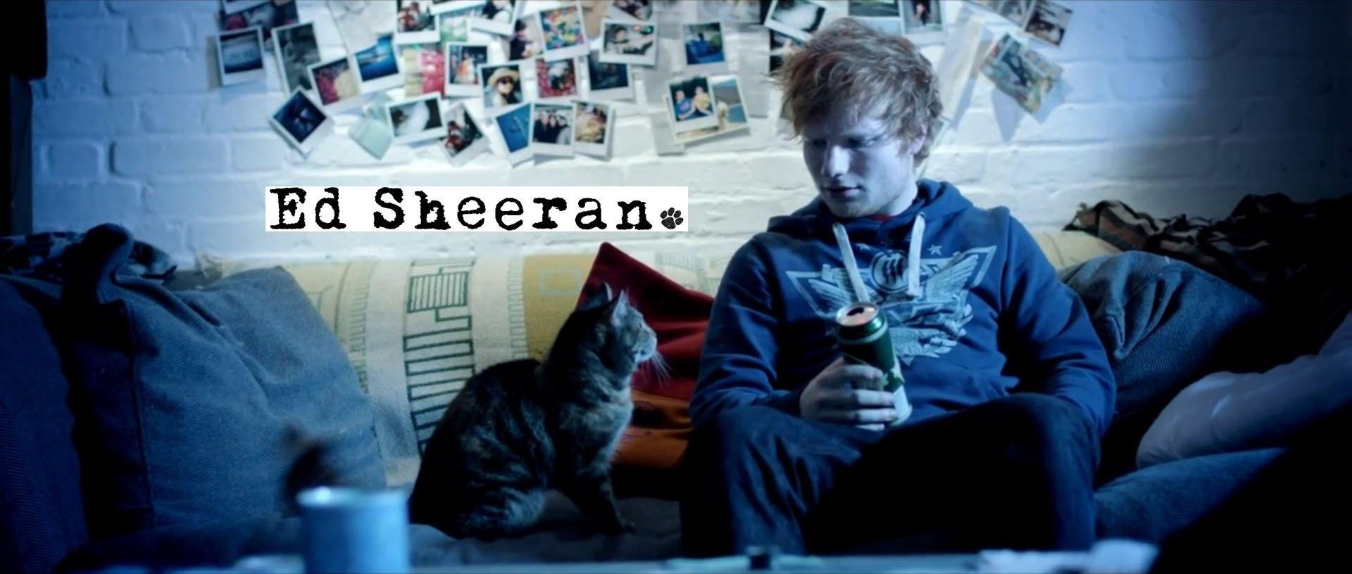 Ed Sheeran Lyrics, Music, News And Biography
