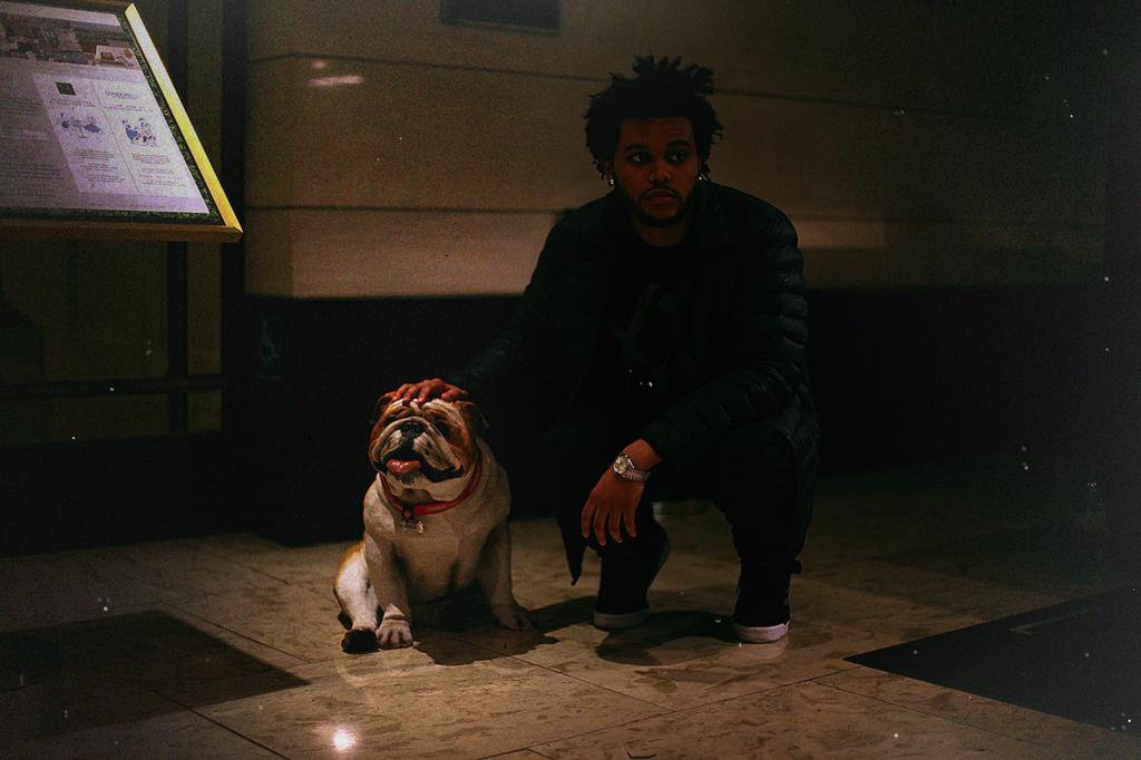 hhThe Weeknd - artist photos