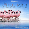 album The Crimson Wing: Mystery of the Flamingos by The Cinematic Orchestra