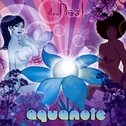 album The Pearl by Aquanote