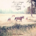 album Sometimes I Wish We Were an Eagle by Bill Callahan