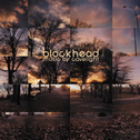 album Music By Cavelight by Blockhead