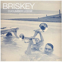 album Cucumber Lodge by Briskey