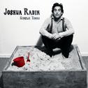 album Simple Times by Joshua Radin
