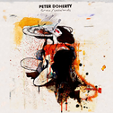 album Grace/Wastelands by Peter Doherty