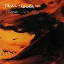 album Carved Into Roses by Skullflower