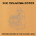 album Protein Source of the Future... Now! by The Mountain Goats