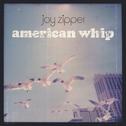 album American Whip by Joy Zipper