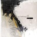 album Meta by Assemblage 23