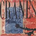 album Espero by Cranes