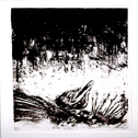 album Presences Of Absences by Asva