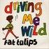 Driving Me Wild!