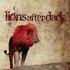 Lions After Dark