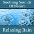 Soothing Sounds Of Nature - Relaxing Rain