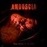 From Abuse to Apostasy (Bonus Disc: Mùsica de Ambientaciòn Demencial)