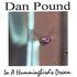 In A Hummingbird's Dream