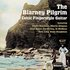 The Blarney Pilgrim: Celtic Fingerstyle Guitar Volume Two