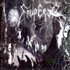Scattered Ashes: A Decade Of Emperial Wrath