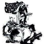 2011 Beam Orchestra