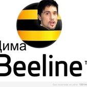Дима Билайн