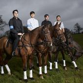 horses. [png]