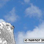 10 Marmot Drive