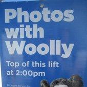 Woolly Mammal