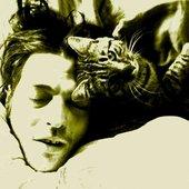 uyanmış kedi