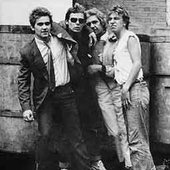 The Crabs (70s British punk band)