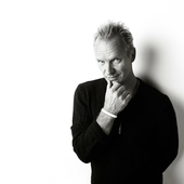 Sting - Photo's author not found.