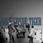 Rock Group Tiger