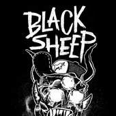 BLACK SHEEP from Belgium