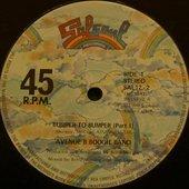 Avenue B Boogie Band