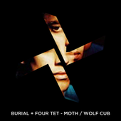 "Burial & Four Tet ""Moth / Wolf Cub\"" Artwork Idea"