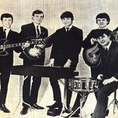 the fortunes 1965