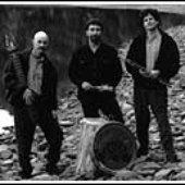 Gorn, Levin, Marotta