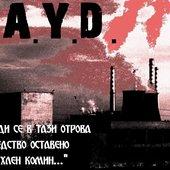 F.A.Y.D.