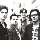 Possum Dixon 1996
