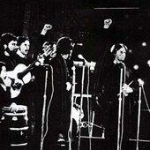 Viña2 1973